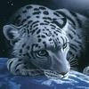 Аватар для Митяй Орешкин